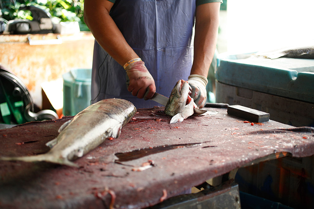 A man is cutting a fish on a brown table. He holds the head of the fish in one hand, and a knife in the other. On the left side, the rest of the fish is lying on the table.
