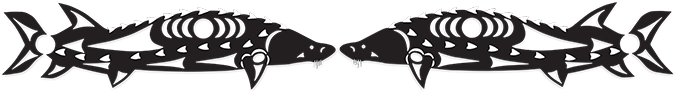 Two light grey sturgeon fish in mirror image, with dark grey scales on the outline of each body.