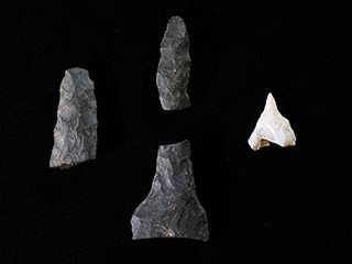 Three black and one white pieces of stone fashioned into points.