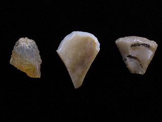 Three triangular pieces of white stone with one sharpened edge.